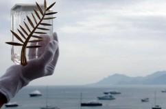 le Palme del Festival di Cannes 2013