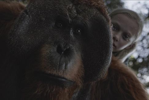 The War – Il pianeta delle scimmie: Elegia del digitale