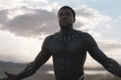 Black Panther: I misteri della giungla nera